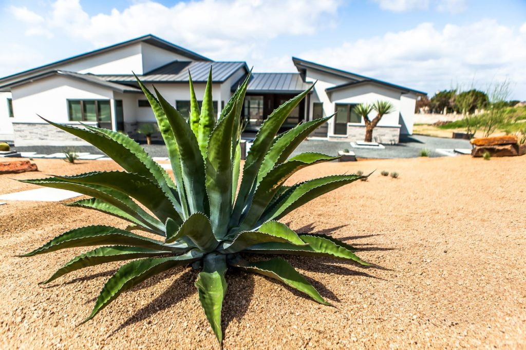Casa Agave custom landscape design by LUSH Greenscape Design in Gruene, TX