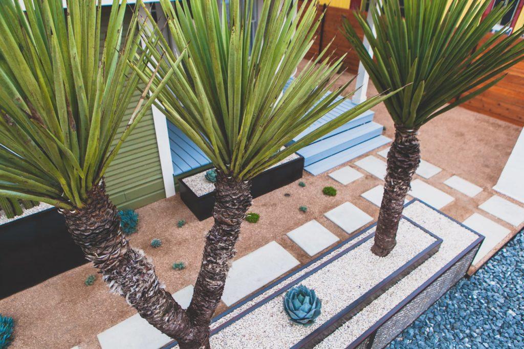 Dignowity Hill custom landscape design by LUSH Greenscape Design in San Antonio, TX