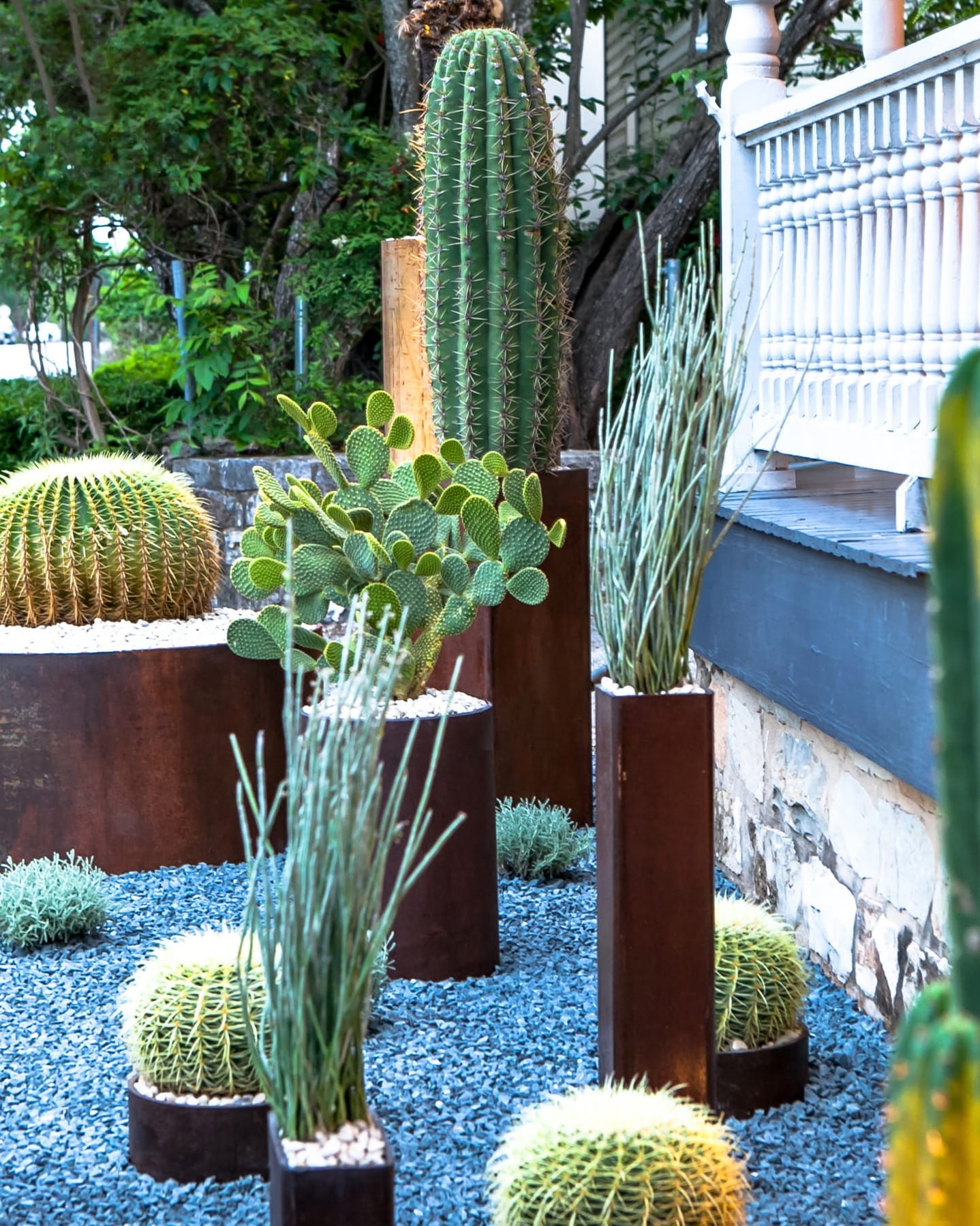Jackalope Boutique custom landscape design by LUSH Greenscape Design in New Braunfels, TX