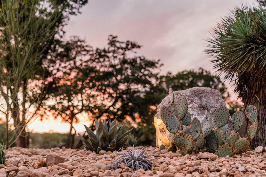 Wombat Grove custom landscape design by LUSH Greenscape Design in New Braunfels, TX