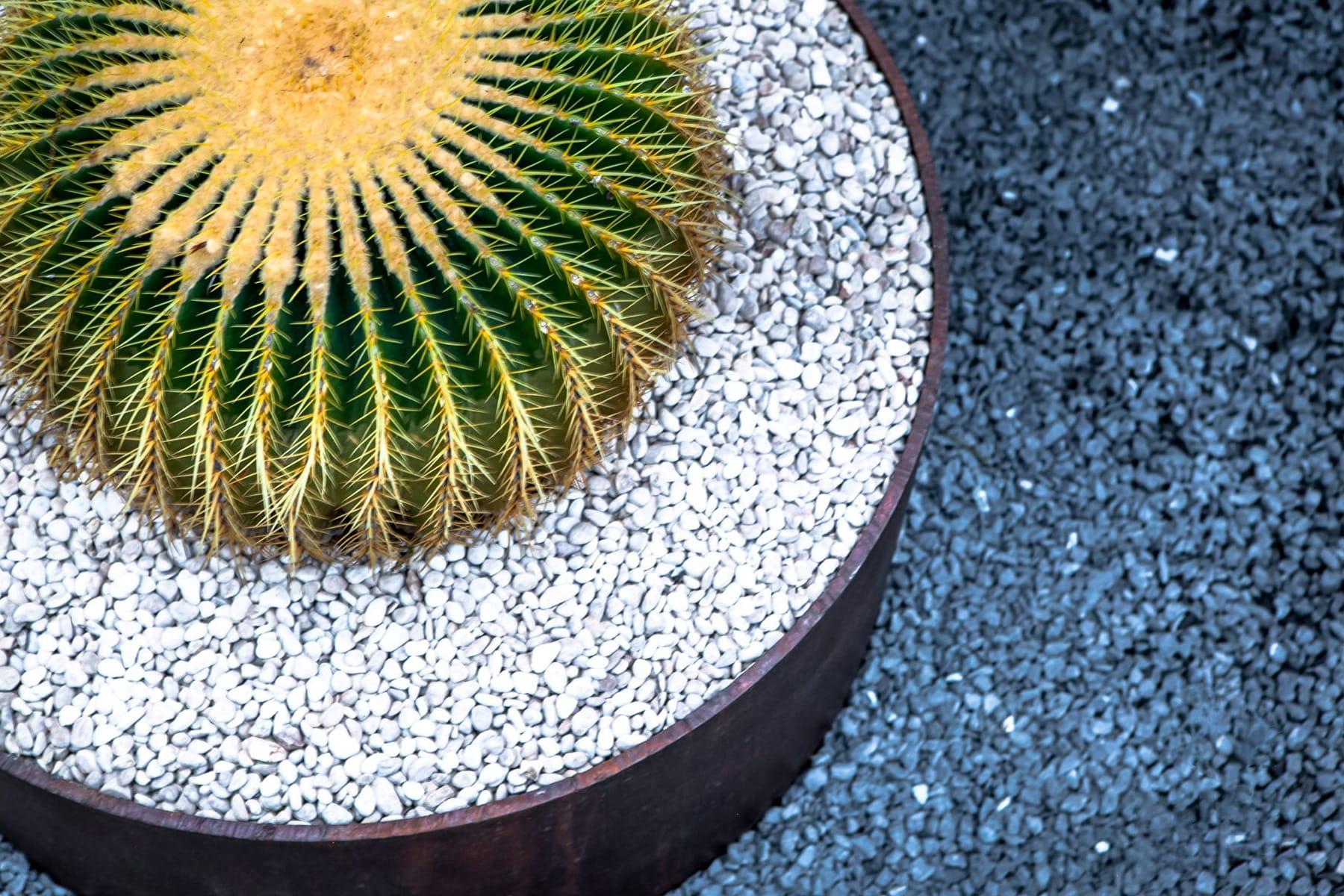 LUSH Greenscape Design barrel cactus custom iron detail